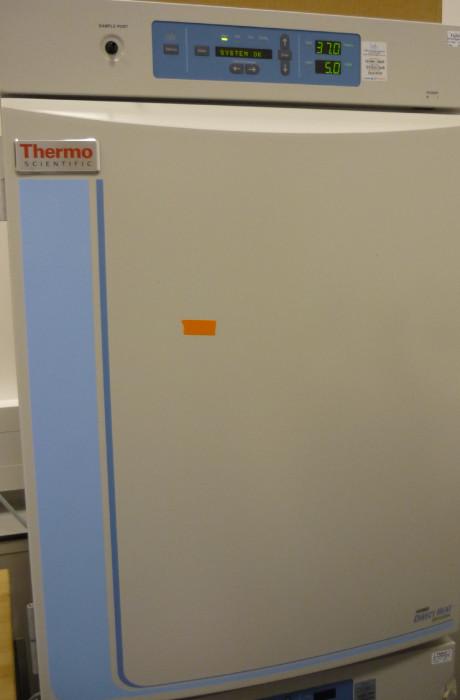 Thermo Heraeus Forma Direct Heat CO2 Incubator